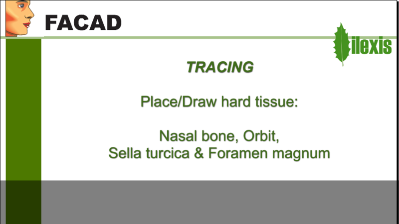 Place/Draw other hard tissue