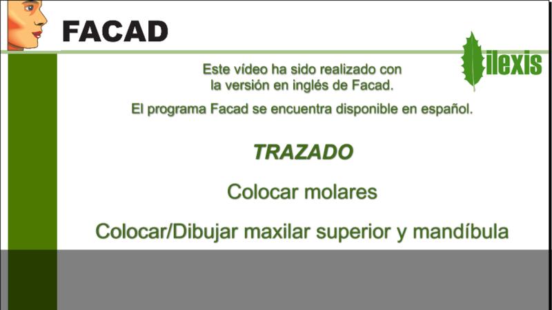 Colocar/Dibujar molares, maxilar superior y mandíbula